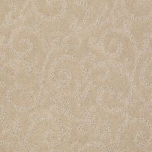 Anderson Tuftex American Home Fashions Calming Effects Humus 00123_ZA952
