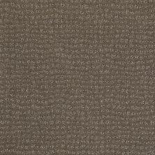 Anderson Tuftex American Home Fashions See You Again Granite 00756_ZA957
