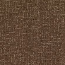 Anderson Tuftex American Home Fashions Show Me Off Iced Latte 00726_ZA958