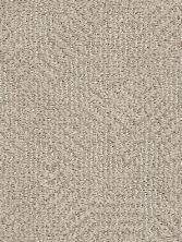 Anderson Tuftex Builder Razzy Cocoa Sand 00752_ZB222