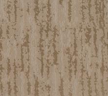 Anderson Tuftex Builder Realm Birchwood 00712_ZB228