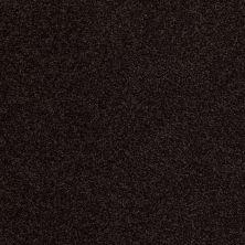 Anderson Tuftex Builder Elite Charm Dark Espresso 00759_ZB786