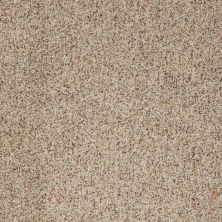 Anderson Tuftex Builder Sheer Genius I Berber Heather 0174B_ZB813