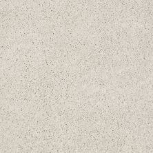 Anderson Tuftex Builder Sheer Genius I Chic Cream 00112_ZB814