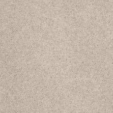 Anderson Tuftex Builder Sheer Genius I Cement 00512_ZB814