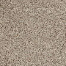 Anderson Tuftex Builder For All Time Limestone 00552_ZB855
