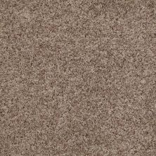 Anderson Tuftex Builder For All Time Smokey Taupe 00576_ZB855