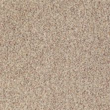 Anderson Tuftex Builder Sheer Genius II Berber Tweed 0121B_ZB941