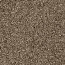 Anderson Tuftex Builder Sheer Genius II Cottage Stone 00735_ZB942