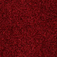 Anderson Tuftex Builder Fresh Vision Red Carpet 00808_ZB949