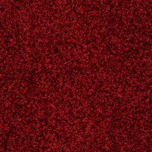 Anderson Tuftex Builder Fresh Vision Red Carpet 00808_ZB949