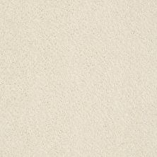 Anderson Tuftex Builder Pepper Dream Dust 00120_ZB954