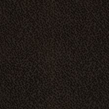 Anderson Tuftex Builder Pepper Espresso 00724_ZB954