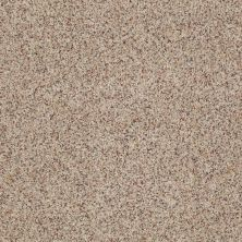 Anderson Tuftex East Place I Terrazzo 0213B_ZE003