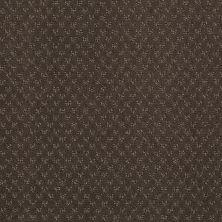 Anderson Tuftex Vista Ridge Chocolate Curl 00757_ZE899