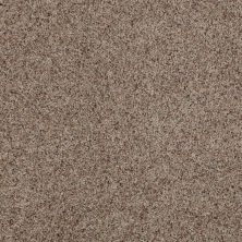 Anderson Tuftex American Home Fashions Our Place I Buckshot 0521B_ZJ003