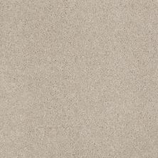 Anderson Tuftex American Home Fashions Our Place II Tea Biscuit 00121_ZJ005