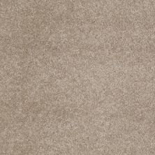 Anderson Tuftex American Home Fashions Our Place II Latte 00172_ZJ005