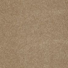 Anderson Tuftex American Home Fashions Our Place II Oat Cake 00273_ZJ005