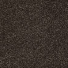 Anderson Tuftex American Home Fashions Our Place II Cocoa Bean 00778_ZJ005