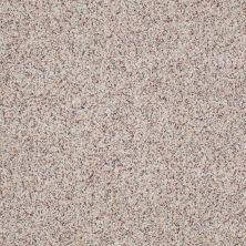 Anderson Tuftex American Home Fashions Our Place II Crushed Pearl 0212B_ZJ005