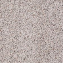 Anderson Tuftex American Home Fashions Canyon View Crushed Pearl 0212B_ZJ006