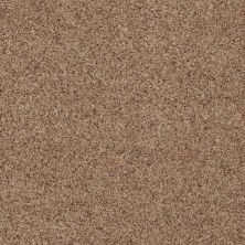 Anderson Tuftex American Home Fashions Canyon View Cinnamon Toast 0722B_ZJ006