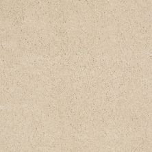 Anderson Tuftex AHF Builder Select Kingston Place Icy Ivory 00122_ZL583