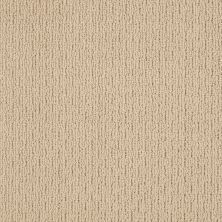 Anderson Tuftex AHF Builder Select House Warming Chamois 00221_ZL812