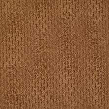 Anderson Tuftex AHF Builder Select Now Showing Sun Baked 00767_ZL820