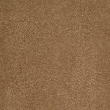 Anderson Tuftex AHF Builder Select Sociable Cedar Chest 00276_ZL872