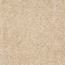 Anderson Tuftex AHF Builder Select Parson's Nevada Sand 04122_ZL914