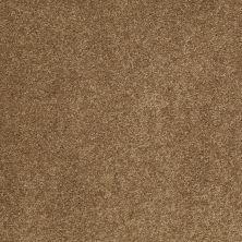 Anderson Tuftex AHF Builder Select Papermate II Bronze Glow 00727_ZL942