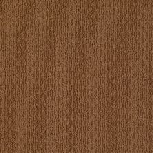 Anderson Tuftex In The City Palm Canyon Modern Brown 00728_ZN820