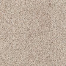 Anderson Tuftex Palladio II Basalt 00165_ZZ002