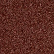 Anderson Tuftex Venecia II Cinnabar 00688_ZZ004