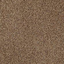 Anderson Tuftex Venecia II Sandstorm 00756_ZZ004