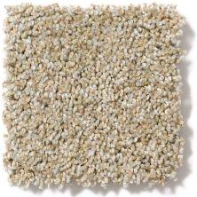 Anderson Tuftex Center Stage II Prairie Sand 00154_ZZ011