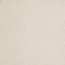 Anderson Tuftex Hudson Falls Jasmine 00120_ZZ014