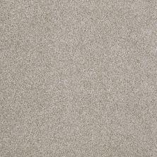 Anderson Tuftex Hudson Falls Gray Dust 00522_ZZ014