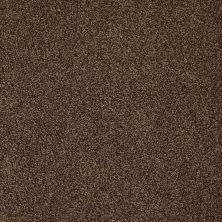 Anderson Tuftex Hudson Falls Truffle 00738_ZZ014