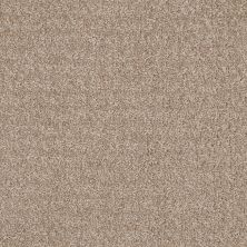 Anderson Tuftex Atria Brushed Tan 00723_ZZ029