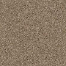 Anderson Tuftex Glide Latte 00172_ZZ033