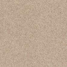 Anderson Tuftex Glide Bashful Tan 00180_ZZ033