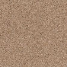 Anderson Tuftex Glide Copper Dust 00664_ZZ033