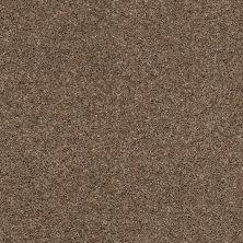 Anderson Tuftex Glide Tamarack 00714_ZZ033