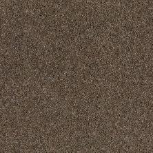 Anderson Tuftex Glide Briarwood 00723_ZZ033
