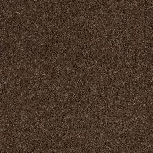 Anderson Tuftex Glide Sable 00775_ZZ033