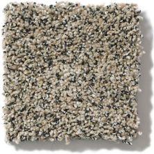 Anderson Tuftex Shimmy Sandshell 00171_ZZ041