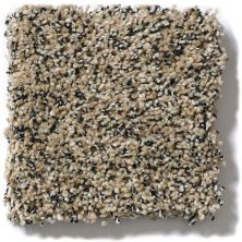 Anderson Tuftex Shimmy Toasty 00253_ZZ041
